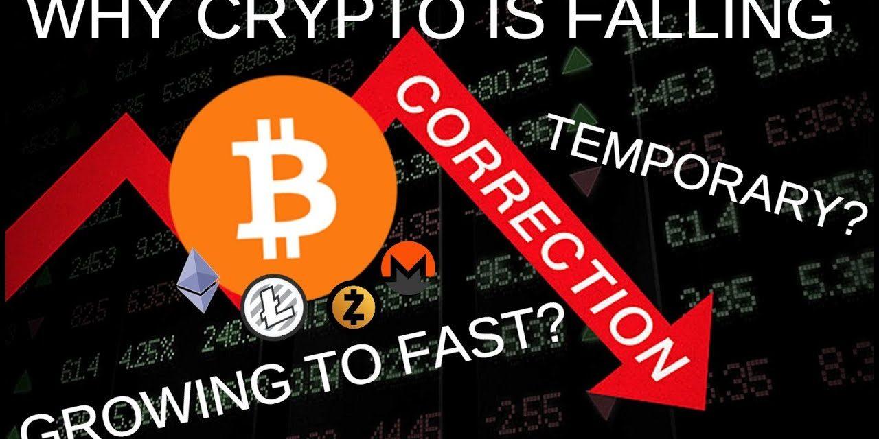 Mike Novogratz's healthy crypto correction