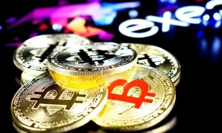 Mike Novogratz See Cryptocurrency Volatility